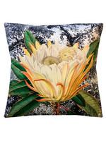 Tyynynpäällinen Yellow Protea