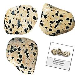 Dalmatialainen jaspis - rumpuhiottu