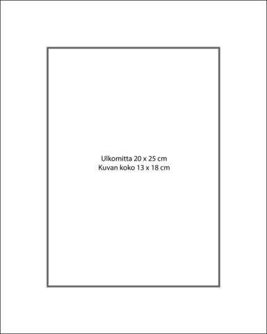 Paspatuuri 20 x 25 cm ulkomitalla