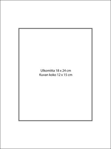 Paspatuuri 18 x 24 cm ulkomitalla