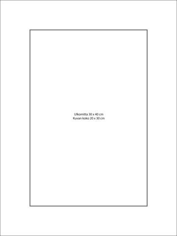 Paspatuuri 30 x 40 cm ulkomitalla