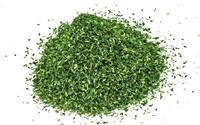 Humbrol Skale Scenics Scatter Material - Dark Green 42g