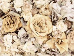 Elegant flowers -trikoo