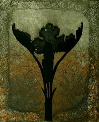 Neuvonen  Papaveraceae