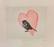Kivinen  Afroditen lintu
