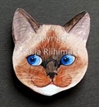 Kissanpäämagneetti nro 3