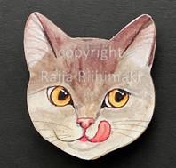 Kissanpäämagneetti nro 6