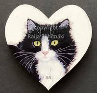 Kissamagneetti sydän nro 10