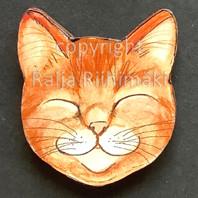 Kissanpäämagneetti nro 14