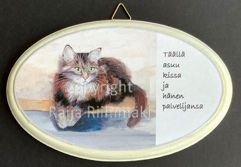 Ovikyltti kissan palvelijat, ruskeankirjava kissa