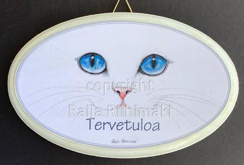 Tervetuloa kyltti, siniset silmät
