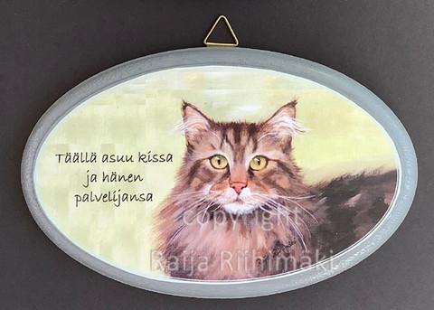 Ovikyltti kissan palvelija, ruskehtava tabby