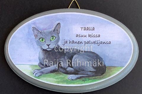 Ovikyltti, harmaa kissa