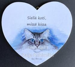 Vanerisydän sinisilmäinen kissa