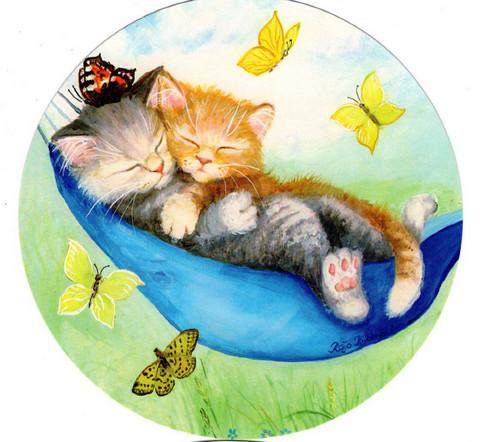Pyöreä kissakortti