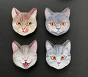 Kissanpää-magneetit