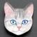 Kissanpäämagneetti nro 2