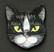 Kissanpäämagneetti nro 4