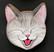 Kissanpäämagneetti nro 10