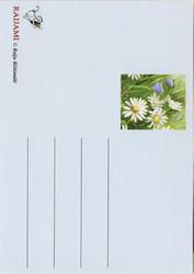 Eläinaiheinen postikortti / Lehmät