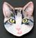 Kissanpäämagneetti nro 8