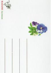 Kukkakortti pioni