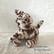Virkattu  ruskeankirjava kissa