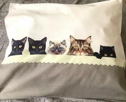 Tyynyliina Kissat nukkumassa