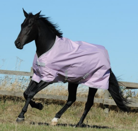 Bucas Freedom Turnout Light sadeloimi, mauve