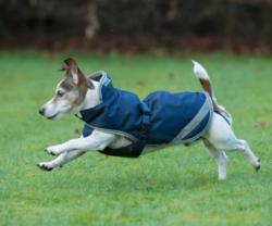 Bucas Freedom Dog Rug, sininen