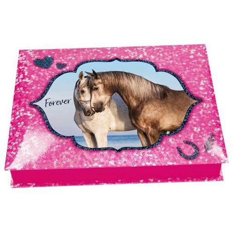 Horses Dreams kirjoitusboxi