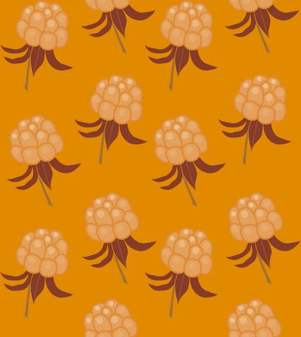 AAVA tunika pitkähihainen Hillat oranssi XS-3XL taskuton/taskuilla