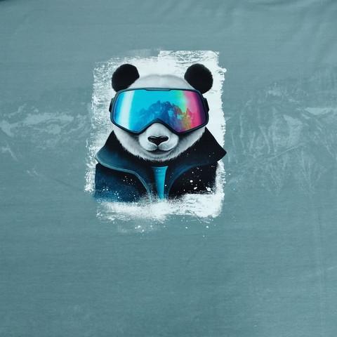 Joustocollege Panda laskettelee vuoristossa.