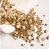 Full package ss20 Crystal golden