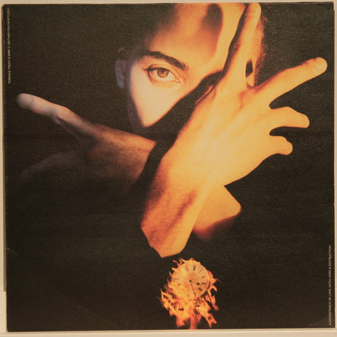 Terence Trent Darby: Neither Fish Nor Flesh
