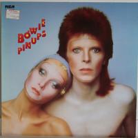 Bowie David: Pin Ups