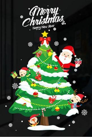 Ikkunatarra, joulukuusi