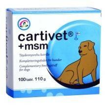 Cartivet +msm 100 tbl
