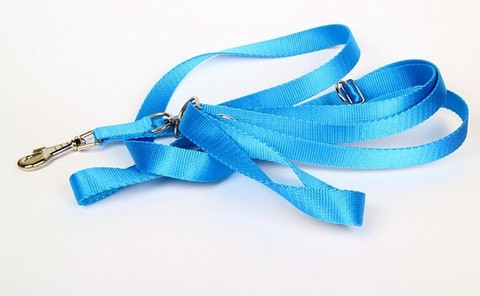 Zooleszcz nylonkoulutustalutin 30 mmx340 cm, sininen