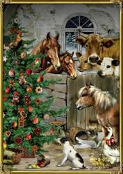 Joulukalenteri, joouluyö tallissa