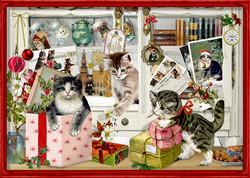 Joulukalenteri, kissojen joulu