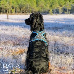 Finnero Ratia 8-shape valjas 60 cm, sininen