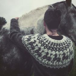 Anna huolia hevosen villapaita, printtiohje
