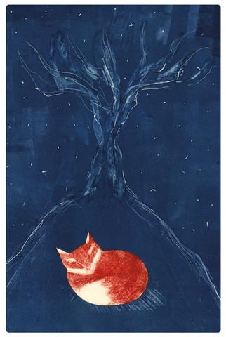 Öinen kettu -taidepostikortti