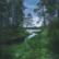 Terveysmetsäretki Helvetinjärven kansallispuistossa la 7.8.2021