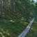 Terveysmetsäretki Seitsemisen kansallispuistossa su 29.8.2021