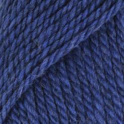 Alaska ruiskukansininen uni colour 15