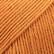 Safran kurpitsa uni colour 67