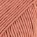 Muskat savi uni colour 81