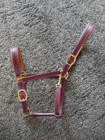 Viininpunainen nahkariimu pienelle hevoselle